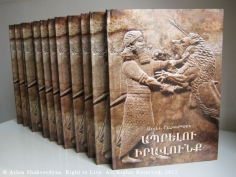 Arlen Shahverdyan. Right to Live. All Rights Reserved, 2012_B