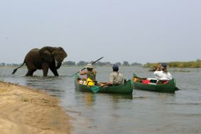 "The source of the Photo: ""Mana Canoe And Walking Trail"" (http://www.onsafari.com/Mana-Canoe-and-Walking-Trail-trip-60-19.htm)"