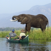 """The source of the Photo: """"Wilderness Safaris, canoeing along the Zambezi River"""" (http://www.encompassafrica.com.au/gallery.asp?gid=3)"""