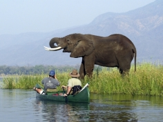 "The source of the Photo: ""Wilderness Safaris, canoeing along the Zambezi River"" (http://www.encompassafrica.com.au/gallery.asp?gid=3)"