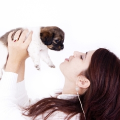 Animal Lovers' Blog