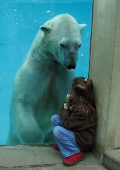 Polar Bear and Girl