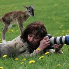 wildlife-photography