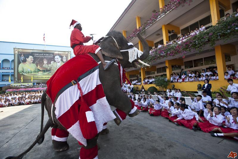 thailand-elephant-santa-2009-12-23-0-40-51