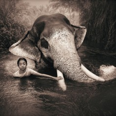 elephant-and-human_harmony-with-the-nature_02