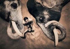 elephant-and-human_harmony-with-the-nature_03
