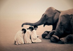 elephant-and-human_harmony-with-the-nature_04