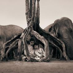 elephant-and-human_harmony-with-the-nature_05