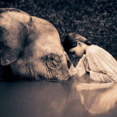 elephant-and-human_harmony-with-the-nature_14
