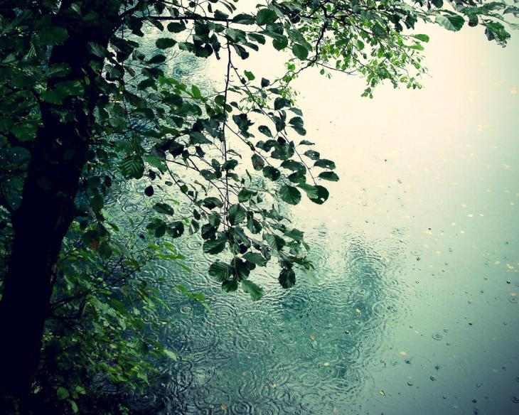 hq-wallpapers_ru_nature_Spring rain