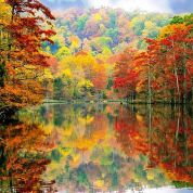 autumn-in-oklahoma-at-beavers-bend-state-park