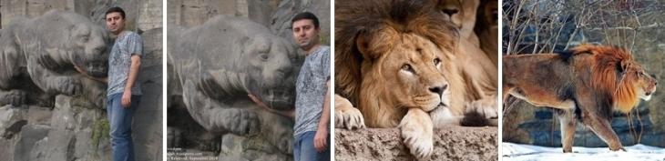 Arlen Shahverdyan. Lioness Statue - Image