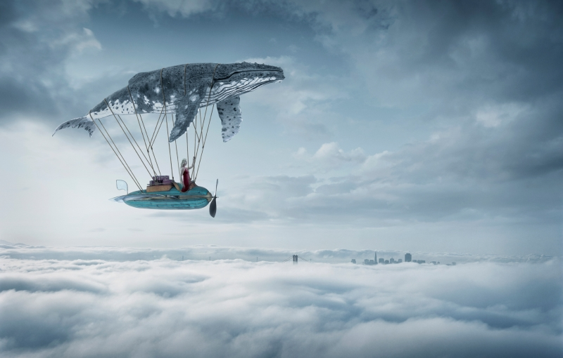 Gliding-through-the-clouds-with-a-whale-shark-Erik-Almas-Dremascapes