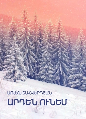 arlen-shahverdyan_novel_i-already-have_book-cover