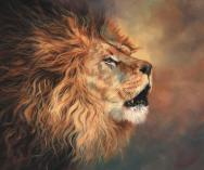 lion-roar-profile-david-stribbling
